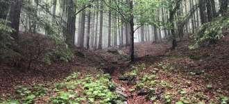 Hydrogeologický průzkum v okolí Studničního vrchu